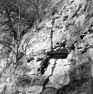 Kirkdale Cave
